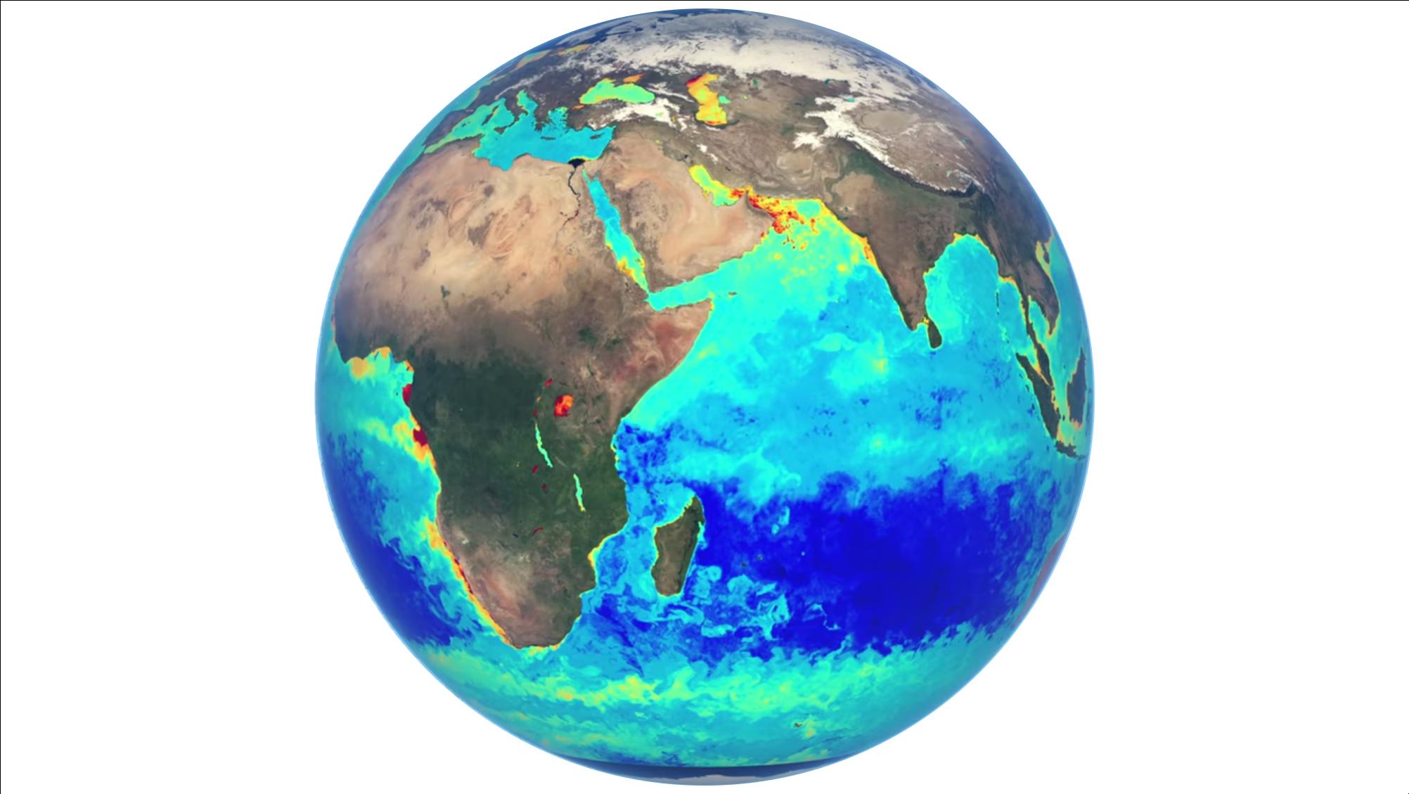 Snapshot of globe showing ocean colour